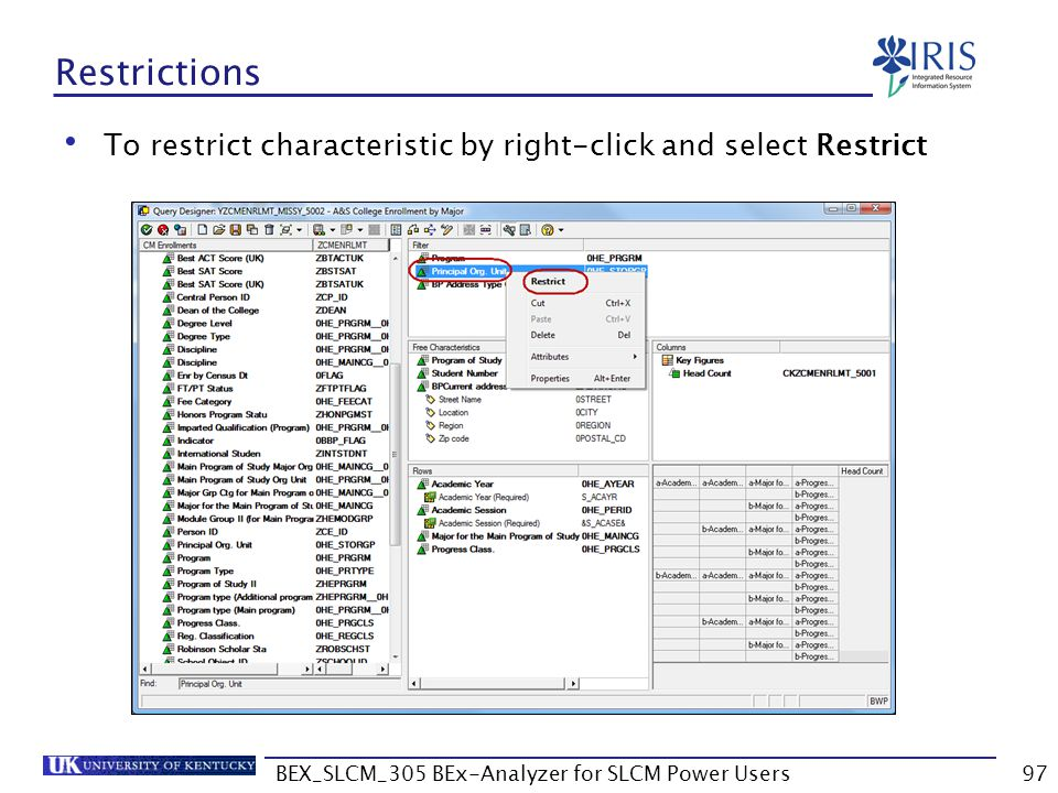 BEX_SLCM_305 BEx-Analyzer for SLCM Power Users97 Restrictions To restrict characteristic by right-click and select Restrict
