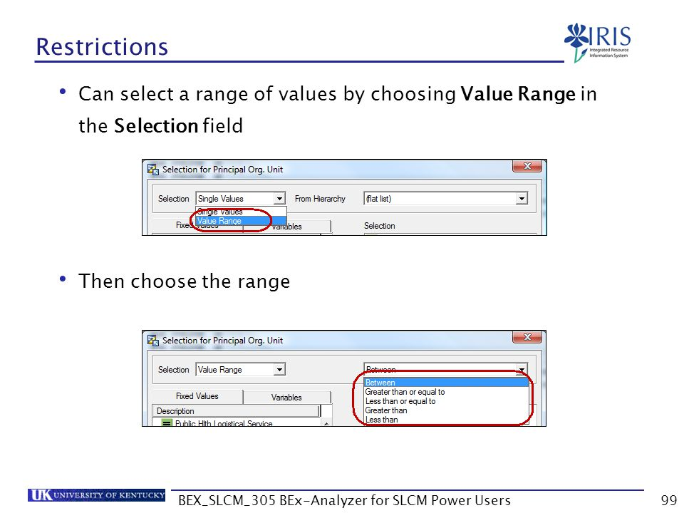 BEX_SLCM_305 BEx-Analyzer for SLCM Power Users99 Restrictions Can select a range of values by choosing Value Range in the Selection field Then choose