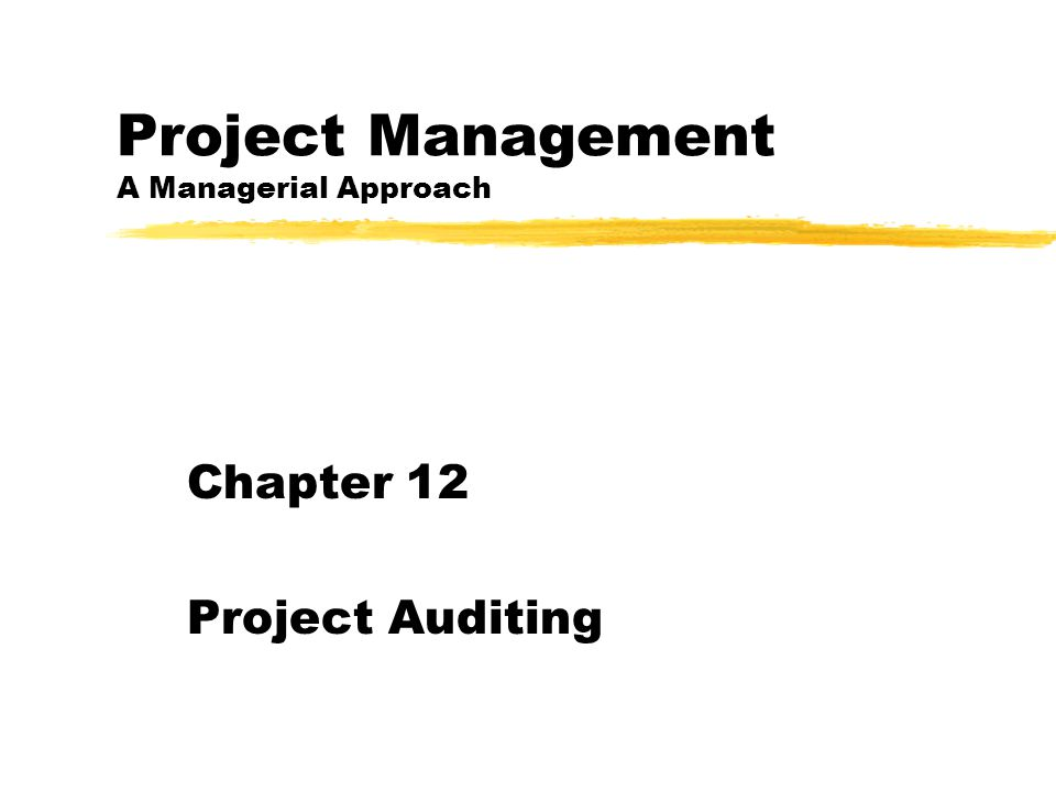 Project Management A Managerial Approach Chapter 12 Project Auditing