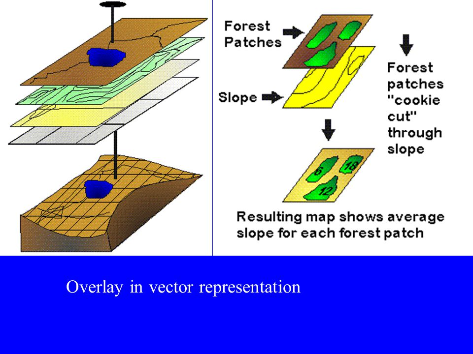 Vector VS Raster Models Raster models are superior in handling phenomena that are related to areas and points while vector models handle line-related
