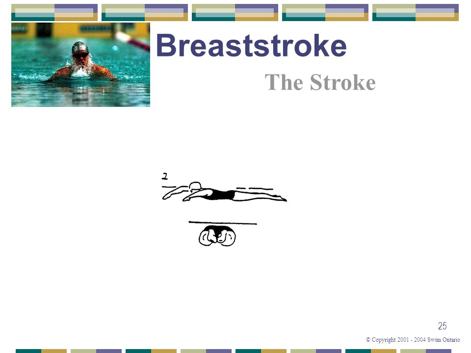 © Copyright 2001 - 2004 Swim Ontario 25 The Stroke Breaststroke