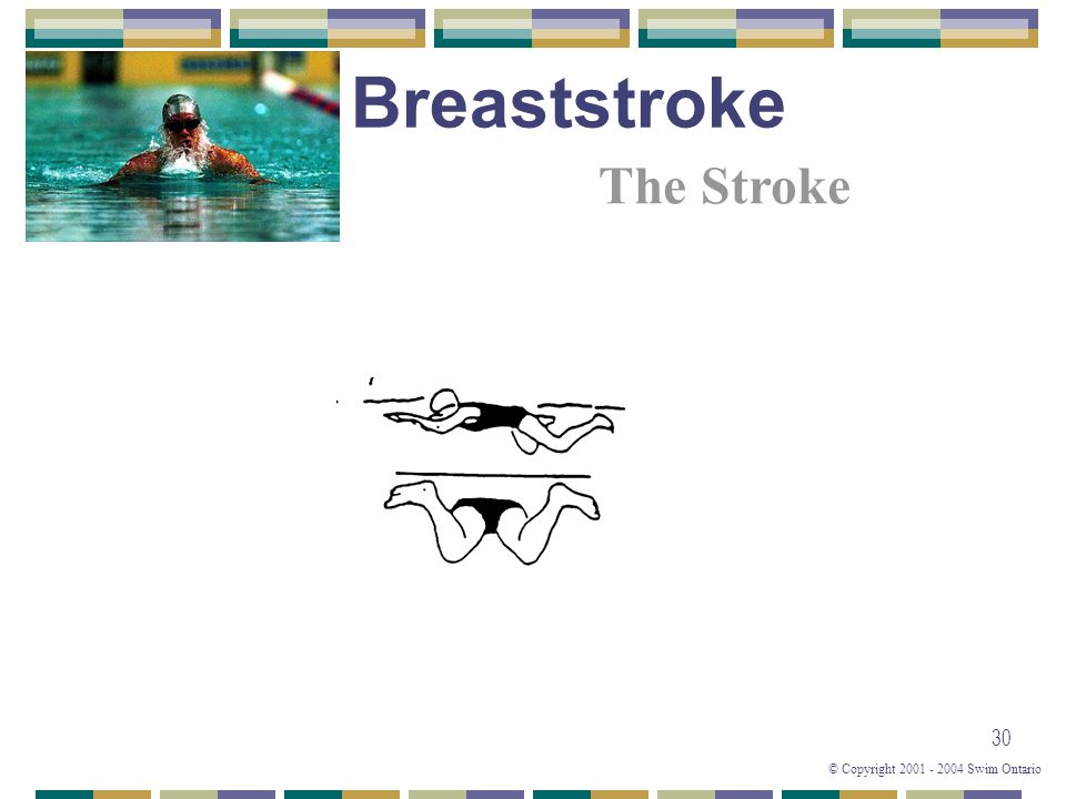 © Copyright 2001 - 2004 Swim Ontario 30 The Stroke Breaststroke