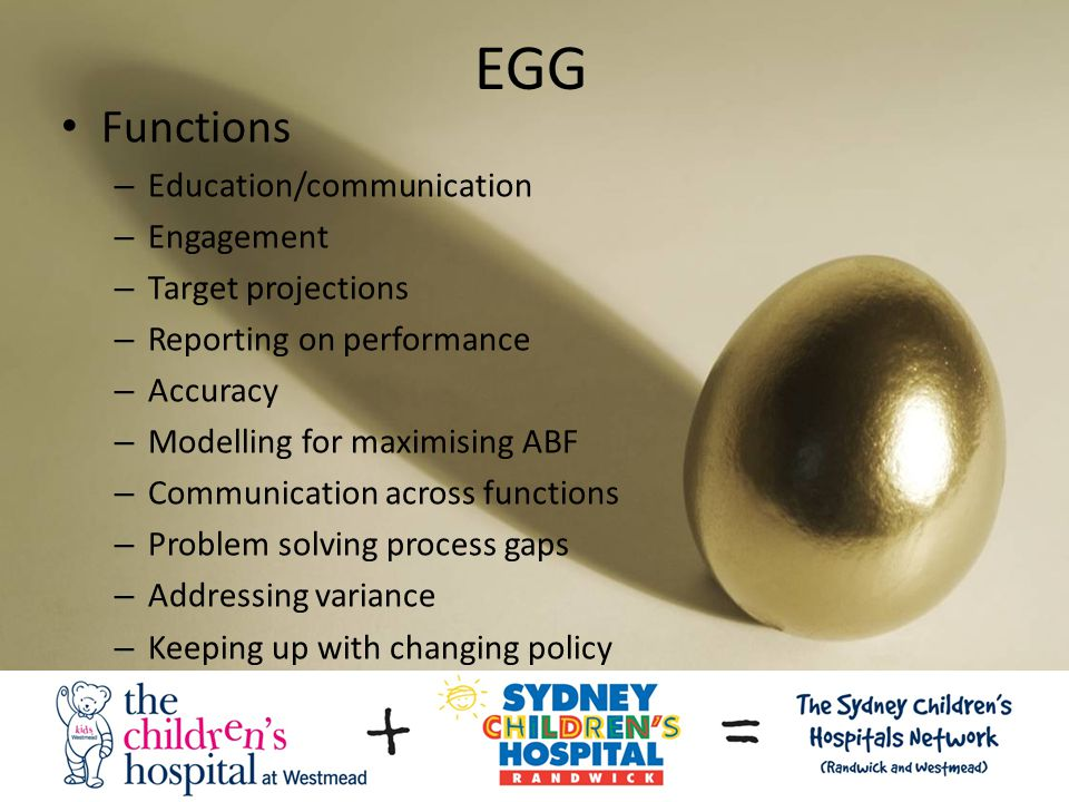 EGG Functions – Education/communication – Engagement – Target projections – Reporting on performance – Accuracy – Modelling for maximising ABF – Communication across functions – Problem solving process gaps – Addressing variance – Keeping up with changing policy