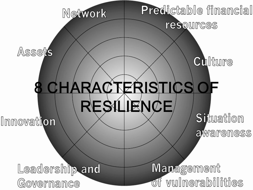 8 CHARACTERISTICS OF RESILIENCE