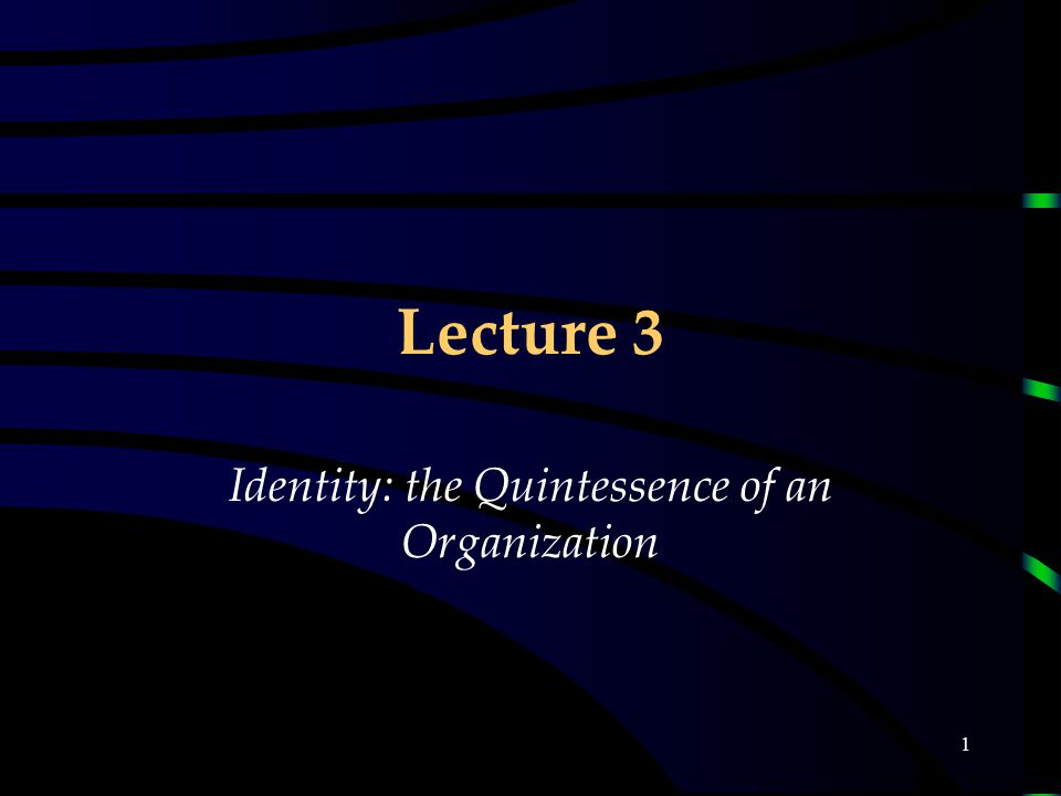 1 Lecture 3 Identity: the Quintessence of an Organization