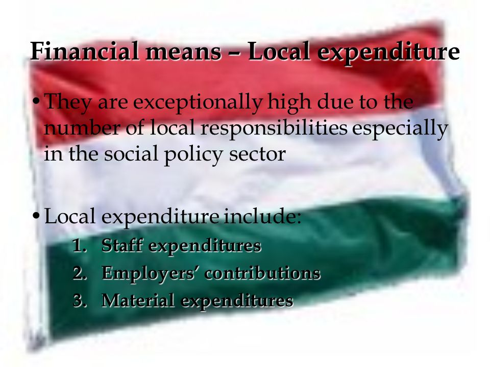 Financial means – Local expenditure They are exceptionally high due to the number of local responsibilities especially in the social policy sector Local expenditure include: 1.Staff expenditures 2.Employers' contributions 3.Material expenditures