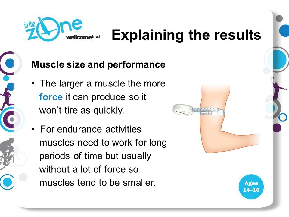 Explaining the results Muscle size and performance The larger a muscle the more force it can produce so it won't tire as quickly.