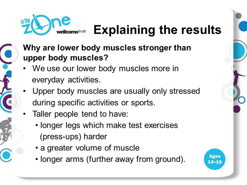 Explaining the results Why are lower body muscles stronger than upper body muscles? We use our lower body muscles more in everyday activities. Upper b