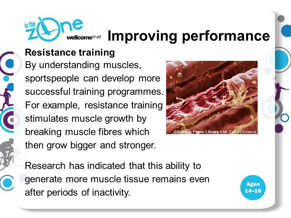 Resistance training By understanding muscles, sportspeople can develop more successful training programmes.