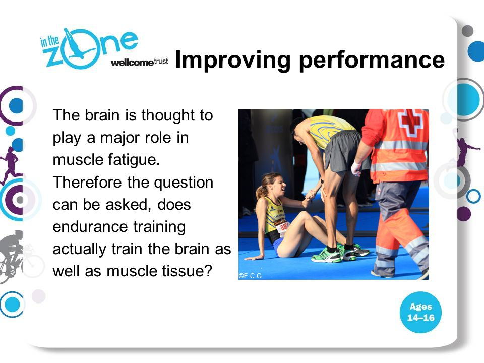 Improving performance The brain is thought to play a major role in muscle fatigue. Therefore the question can be asked, does endurance training actual