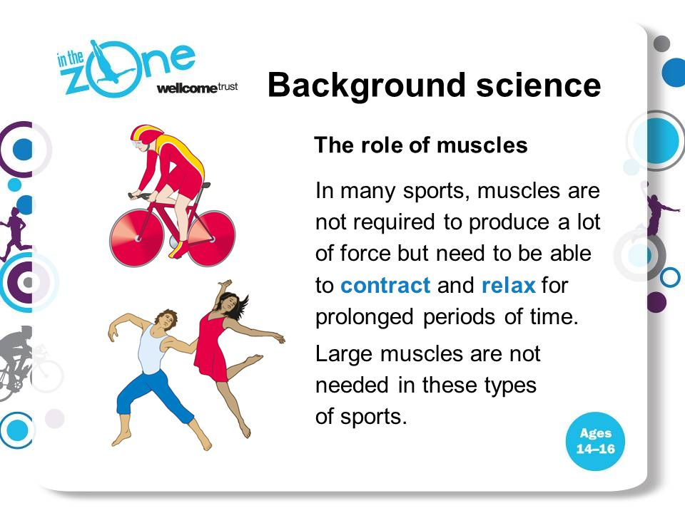 In many sports, muscles are not required to produce a lot of force but need to be able to contract and relax for prolonged periods of time. Large musc