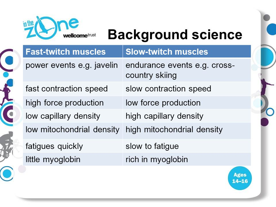 Background science Fast-twitch musclesSlow-twitch muscles power events e.g. javelinendurance events e.g. cross- country skiing fast contraction speeds