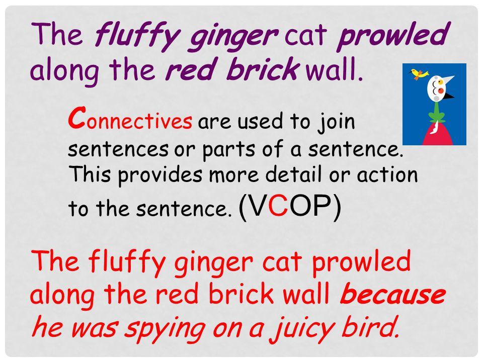 ginger english sentence