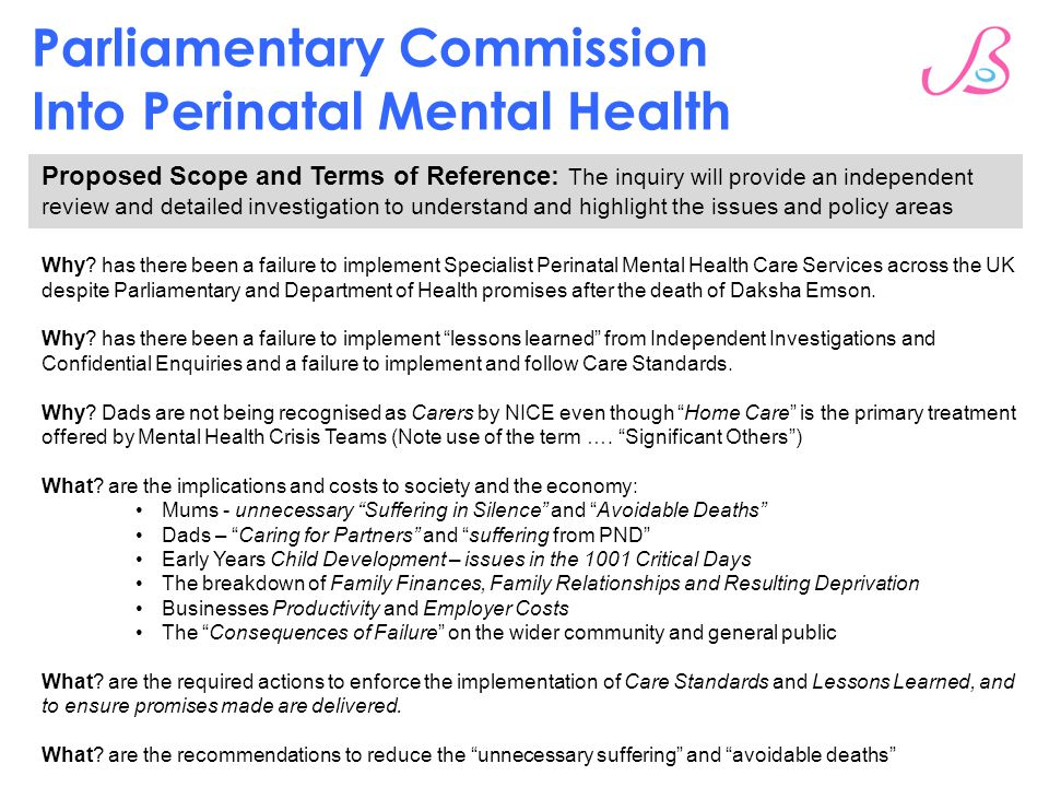 Parliamentary Commission Into Perinatal Mental Health Proposed Scope and Terms of Reference: The inquiry will provide an independent review and detailed investigation to understand and highlight the issues and policy areas Why.