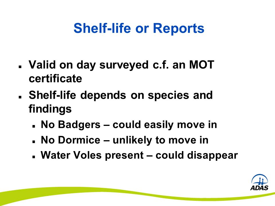 Shelf-life or Reports Valid on day surveyed c.f. an MOT certificate Shelf-life depends on species and findings No Badgers – could easily move in No Do