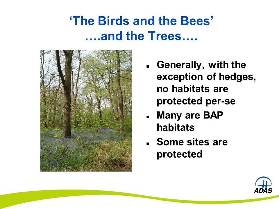 'The Birds and the Bees' ….and the Trees…. Generally, with the exception of hedges, no habitats are protected per-se Many are BAP habitats Some sites