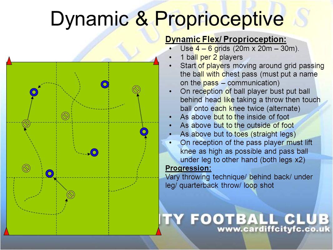 Dynamic & Proprioceptive Dynamic Flex/ Proprioception: Use 4 – 6 grids (20m x 20m – 30m).