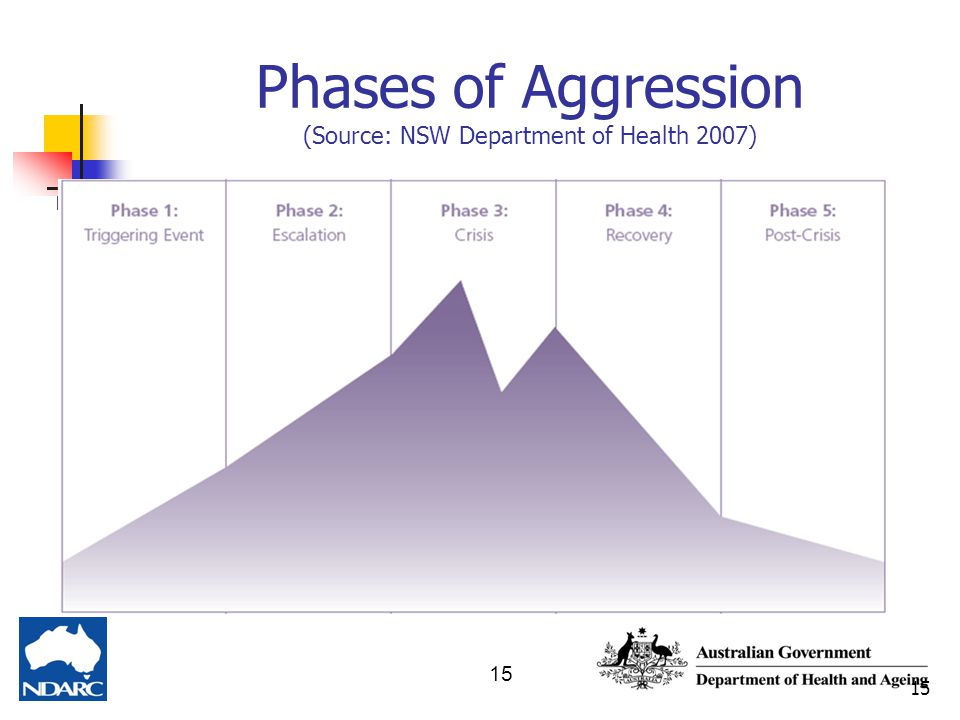15 Phases of Aggression (Source: NSW Department of Health 2007)