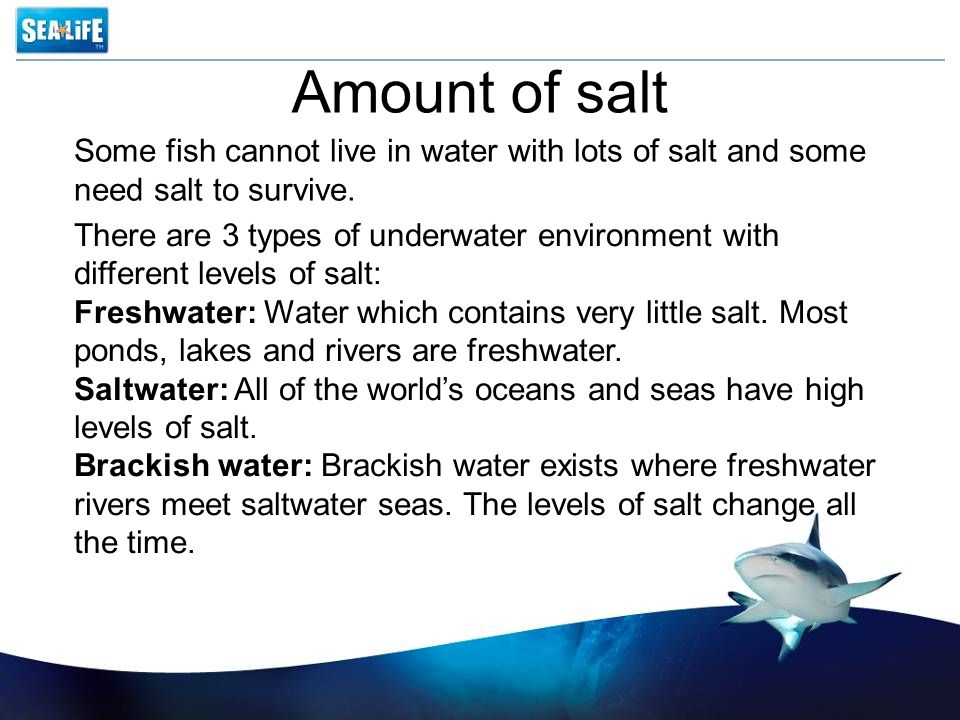 Amount of salt There are 3 types of underwater environment with different levels of salt: Freshwater: Water which contains very little salt.