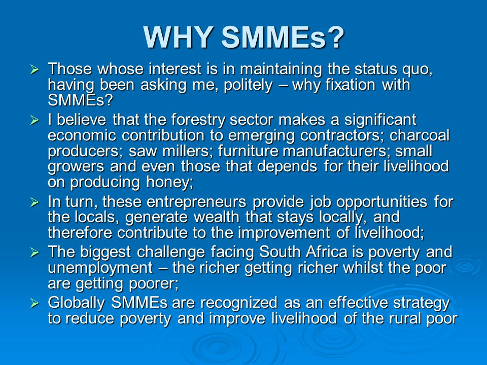 WHY SMMEs?  Those whose interest is in maintaining the status quo, having been asking me, politely – why fixation with SMMEs?  I believe that the fo