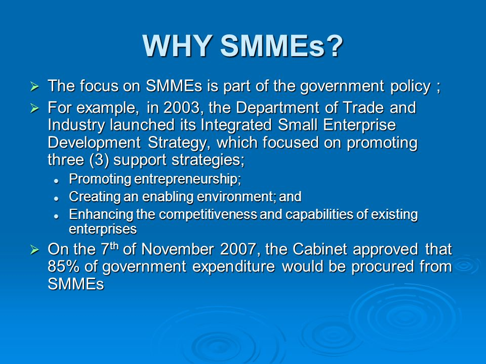 WHY SMMEs?  The focus on SMMEs is part of the government policy ;  For example, in 2003, the Department of Trade and Industry launched its Integrate