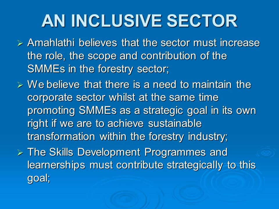 AN INCLUSIVE SECTOR  Amahlathi believes that the sector must increase the role, the scope and contribution of the SMMEs in the forestry sector;  We