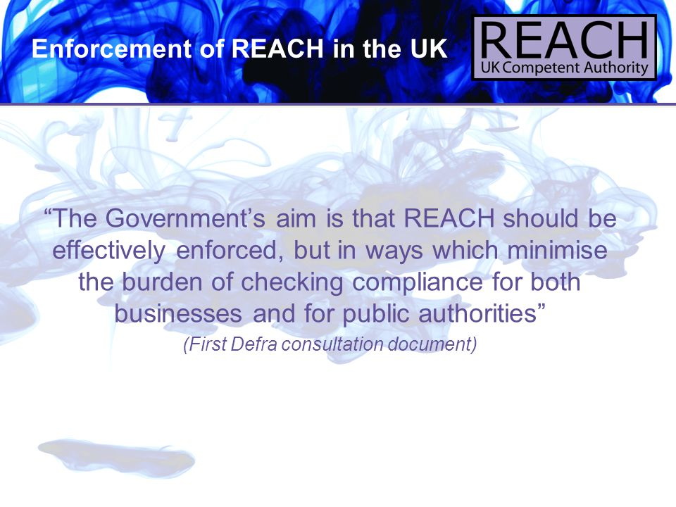 """3 Enforcement of REACH in the UK """"The Government's aim is that REACH should be effectively enforced, but in ways which minimise the burden of checking"""