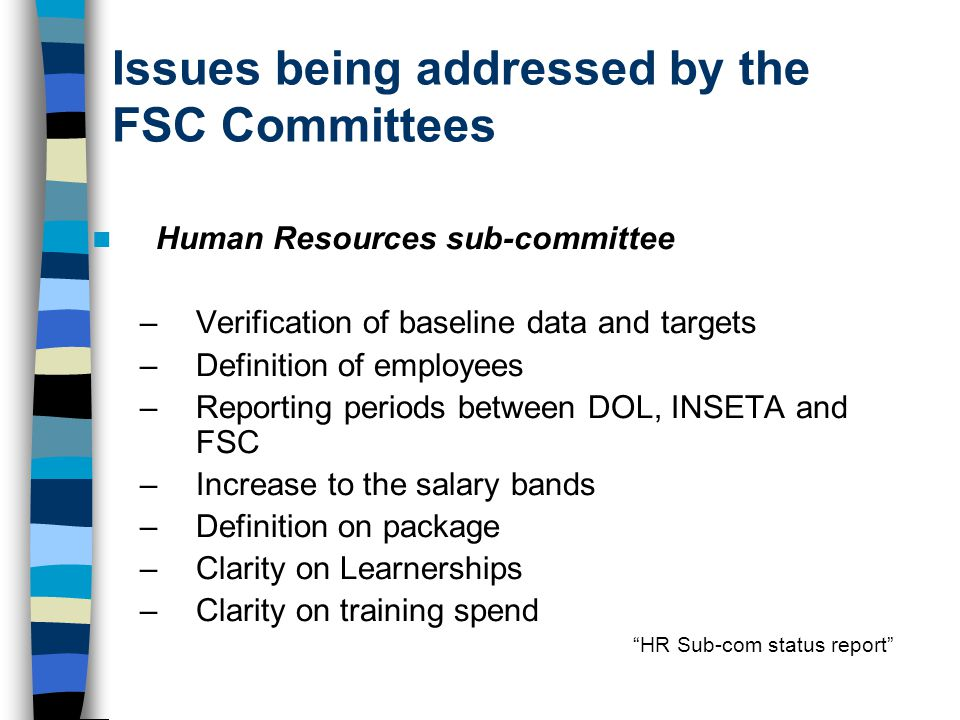 Issues being addressed by the FSC Committees Human Resources sub-committee –Verification of baseline data and targets –Definition of employees –Reporting periods between DOL, INSETA and FSC –Increase to the salary bands –Definition on package –Clarity on Learnerships –Clarity on training spend HR Sub-com status report