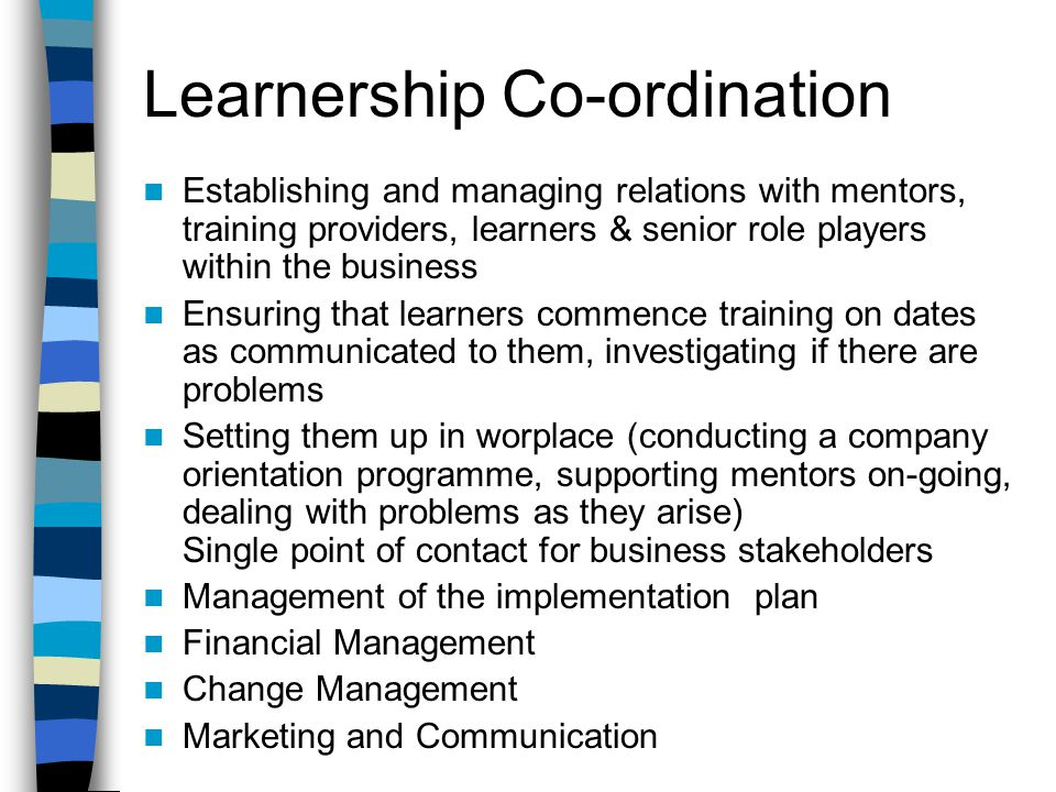 Learnership Co-ordination Establishing and managing relations with mentors, training providers, learners & senior role players within the business Ensuring that learners commence training on dates as communicated to them, investigating if there are problems Setting them up in worplace (conducting a company orientation programme, supporting mentors on-going, dealing with problems as they arise) Single point of contact for business stakeholders Management of the implementation plan Financial Management Change Management Marketing and Communication