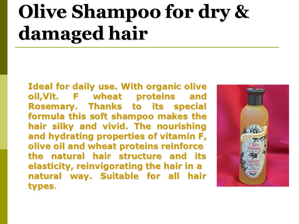 Olive Shampoo for dry & damaged hair Ideal for daily use.