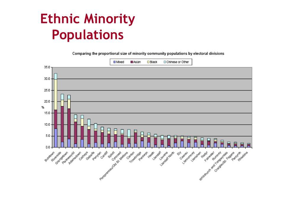 Ethnic Minority Populations