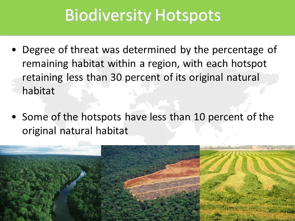 Biodiversity Hotspots Biodiversity Hotspots Degree of threat was determined by the percentage of remaining habitat within a region, with each hotspot retaining less than 30 percent of its original natural habitat Some of the hotspots have less than 10 percent of the original natural habitat