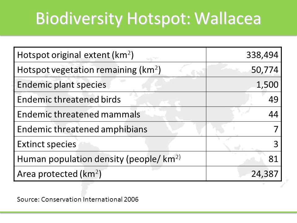 Biodiversity Hotspot: Wallacea Hotspot original extent (km 2 )338,494 Hotspot vegetation remaining (km 2 )50,774 Endemic plant species1,500 Endemic threatened birds49 Endemic threatened mammals44 Endemic threatened amphibians7 Extinct species3 Human population density (people/ km 2) 81 Area protected (km 2 )24,387 Source: Conservation International 2006
