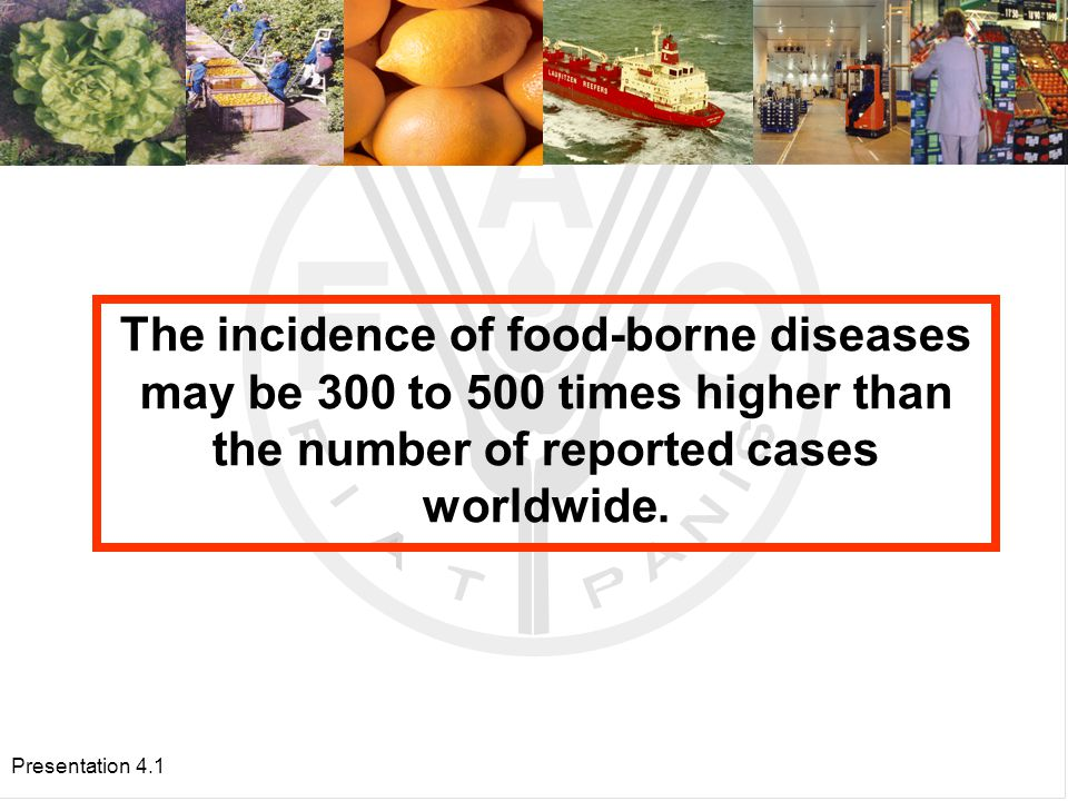 Presentation 4.1 Food borne Diseases Outbreaks in Latin America, 1995-1999.