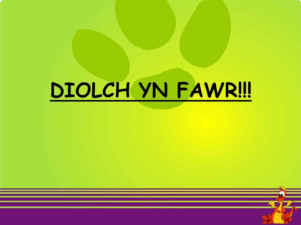 DIOLCH YN FAWR!!!