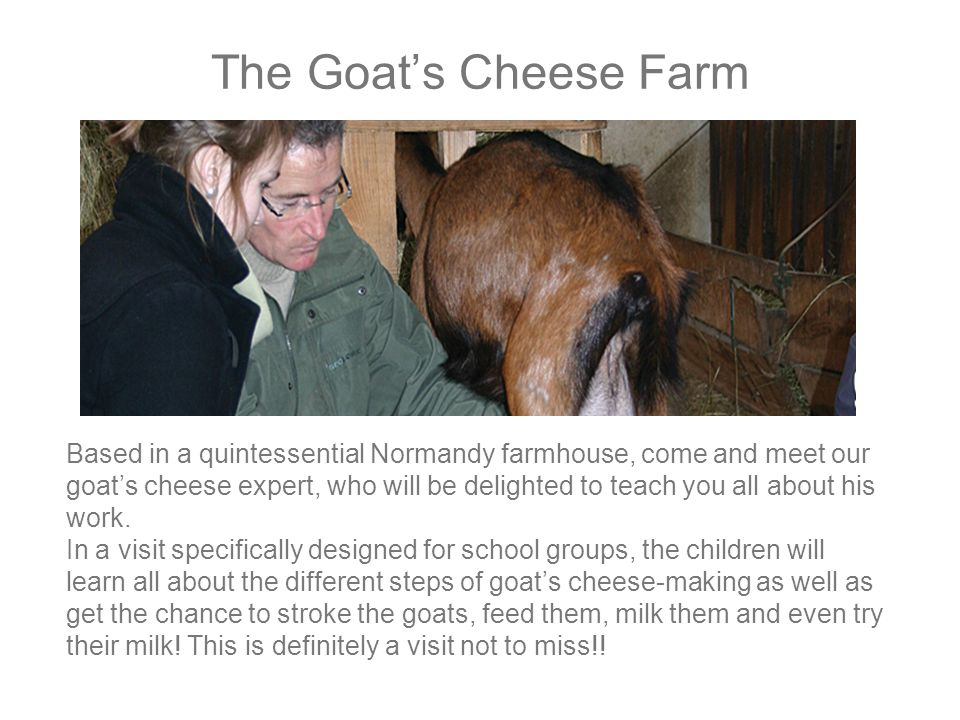 The Goat's Cheese Farm Based in a quintessential Normandy farmhouse, come and meet our goat's cheese expert, who will be delighted to teach you all about his work.