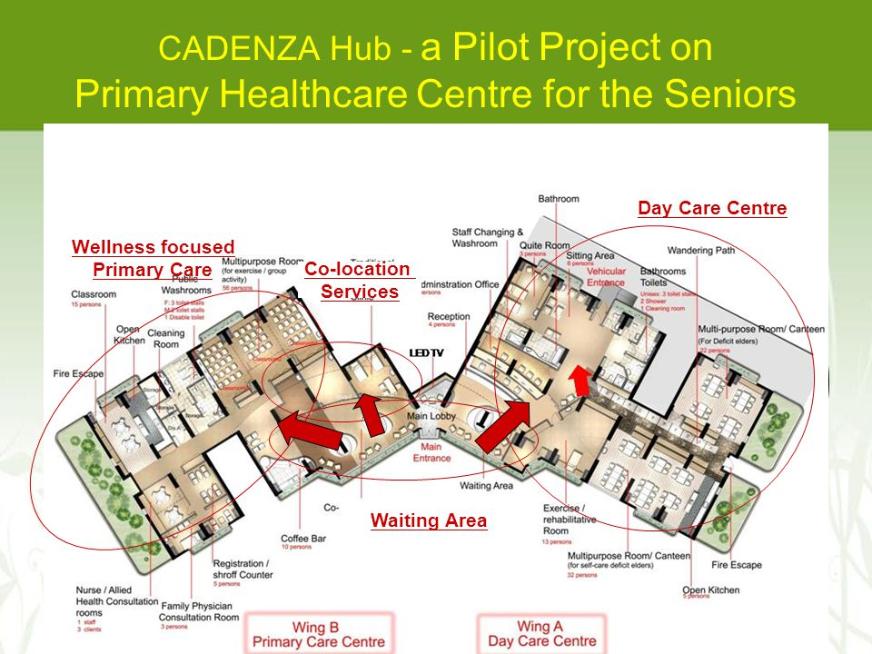 CADENZA Hub - a Pilot Project on Primary Healthcare Centre for the Seniors Day Care Centre Wellness focused Primary Care Co-location Services Waiting Area