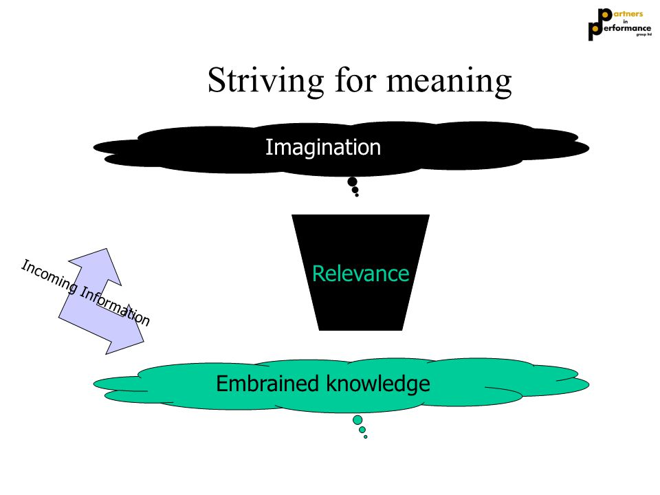 Striving for meaning Embrained knowledge Imagination Relevance Incoming Information