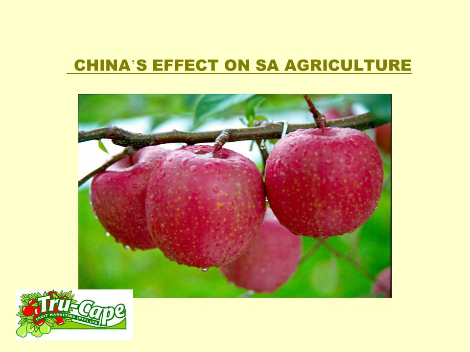 China's effect on SA Agriculture How does all this impact on SA agriculture.