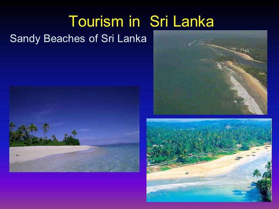 Tourism in Sri Lanka Sandy Beaches of Sri Lanka
