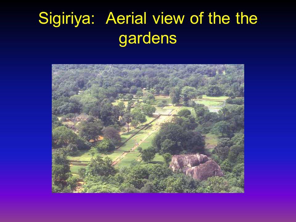 Sigiriya: Aerial view of the the gardens