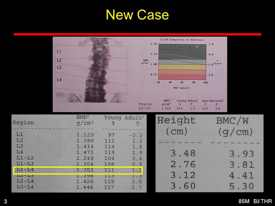 85M Bil THR 3 New Case