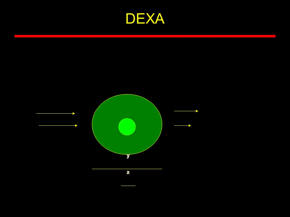 DEXA x y