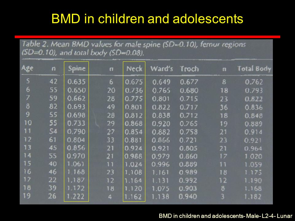 BMD in children and adolescents BMD in children and adolescents- Male- L2-4- Lunar