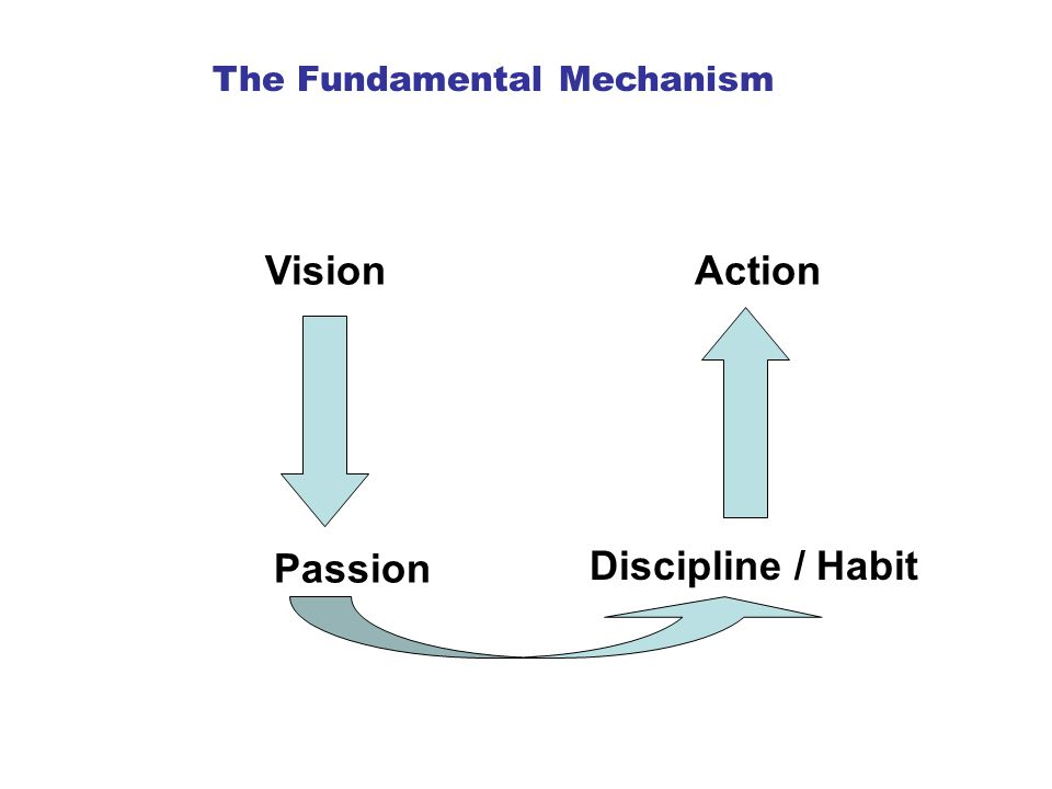 Vision Passion Action Discipline / Habit The Fundamental Mechanism