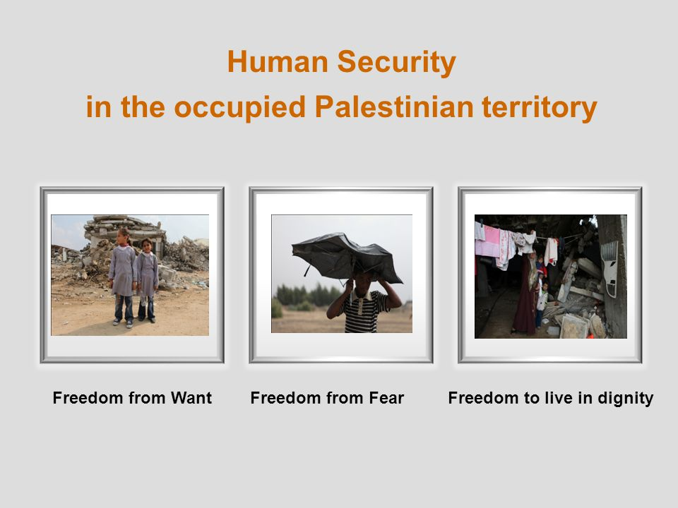 Human Security in the occupied Palestinian territory Freedom from WantFreedom to live in dignityFreedom from Fear