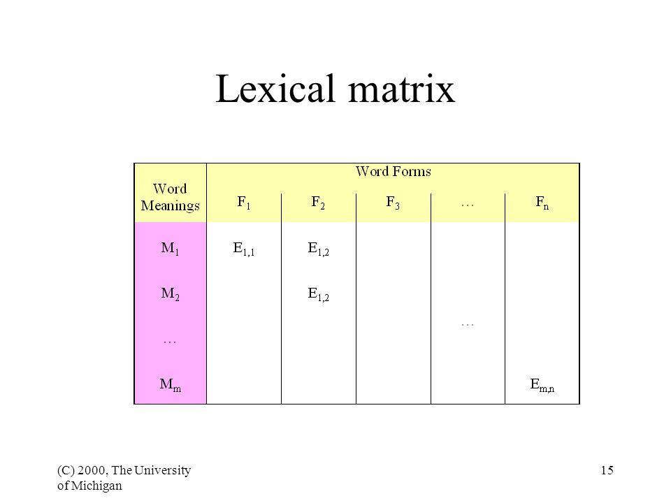 (C) 2000, The University of Michigan 15 Lexical matrix