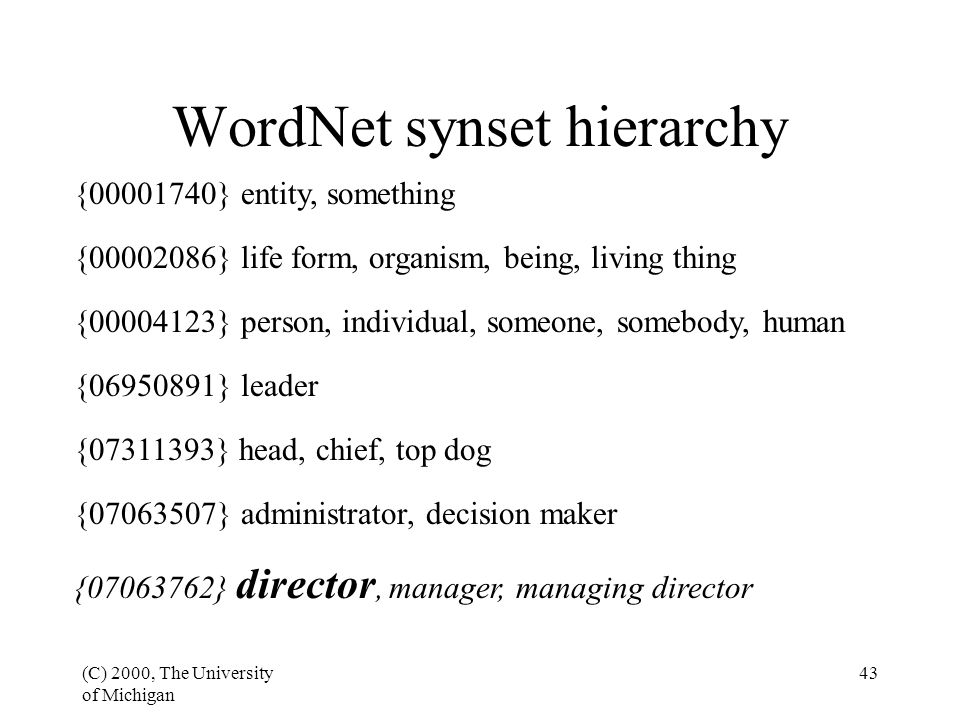 (C) 2000, The University of Michigan 43 WordNet synset hierarchy {07063762} director, manager, managing director {07063507} administrator, decision ma