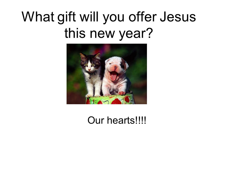 What gift will you offer Jesus this new year Our hearts!!!!