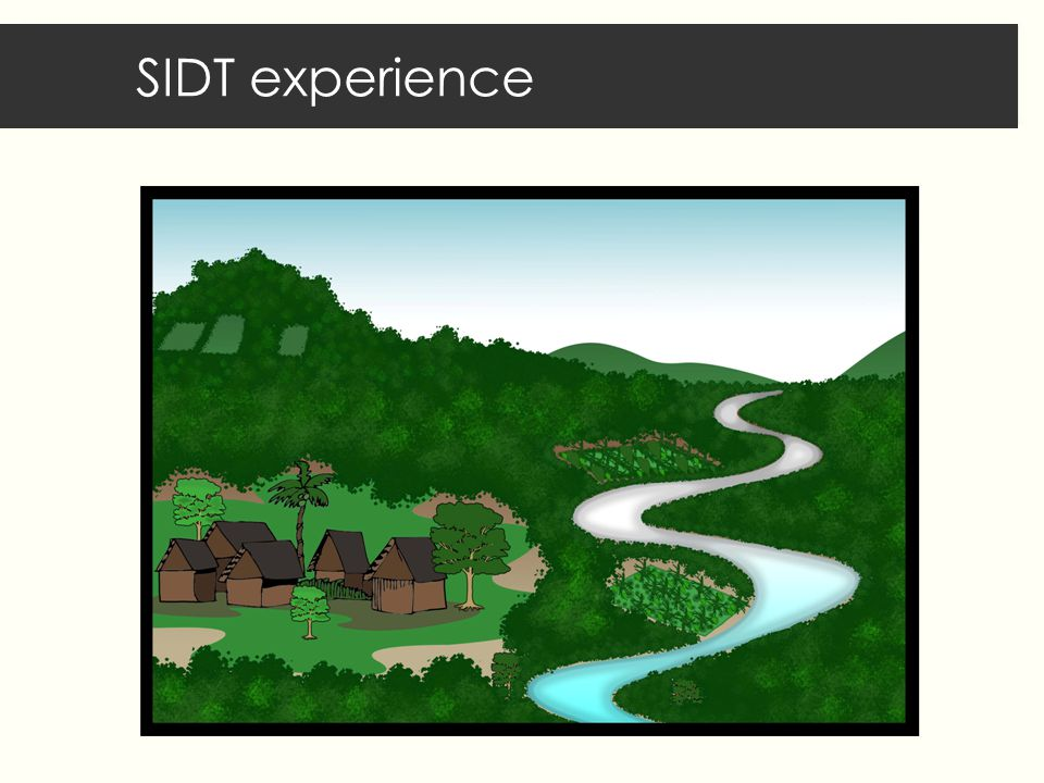 SIDT experience